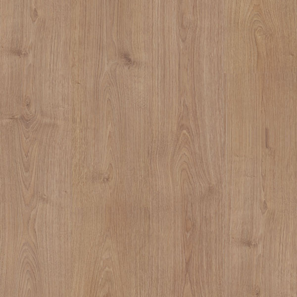 Laminati HRAST CANYON SUGAR COSSTY-3836 | Floor Experts